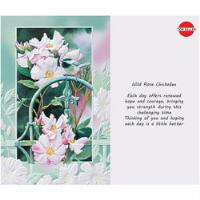 PACK OF 6 COPING-HEALING CARD - PP50504