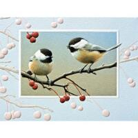 9 Pt Blank Cards Bright Chick - PP70097